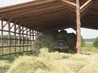 В васильевском складирут рулоны сена